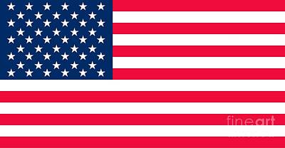 Red Painting - Flag Of The United States Of America by Anonymous