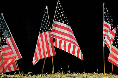 Flags On Float, July 4th Parade Print by Michel Hersen