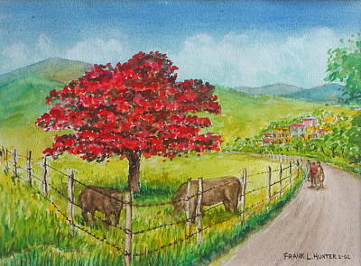 Flamboyan Tree Painting - Flamboyan And Cows In Western Puerto Rico by Frank Hunter