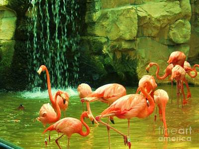 Flamingo Print by Esther Rowden