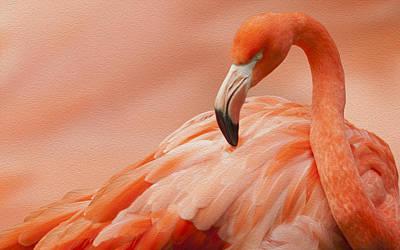 Flamingo Digital Art - Flamingo by Jack Zulli