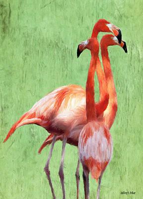 Jeff Digital Art - Flamingo Twist by Jeff Kolker