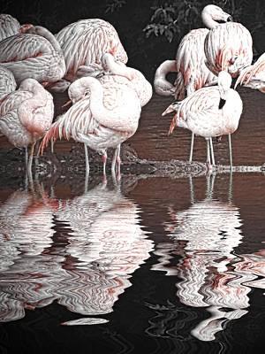 Flamingo Digital Art - Flamingos by Sharon Lisa Clarke