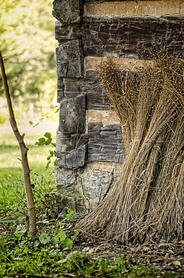 Log Cabin Photograph - Flax by Heather Applegate