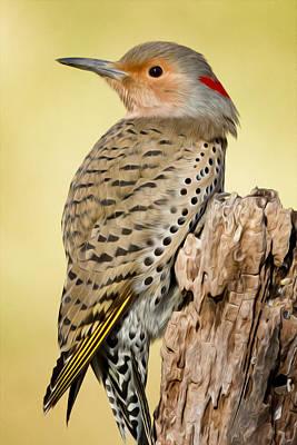 Woodpecker Digital Art - Flicker by Bill Wakeley