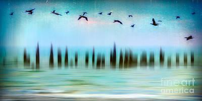 Flight - A Tranquil Moments Landscape Print by Dan Carmichael