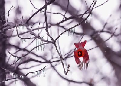 Cardinal Digital Art - Flight Of A Winter Cardinal by Bill Tiepelman