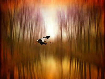 Stork Digital Art - Flight Of Fancy by Jessica Jenney