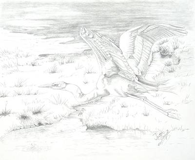 Egret Drawing - Flight Of Grace by Joette Snyder