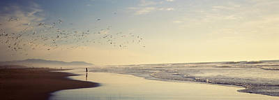 Flying Seagull Photograph - Flock Of Seagulls Flying Above A Woman by Panoramic Images
