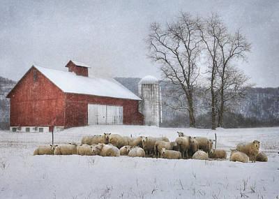 Flock Of Sheep Print by Lori Deiter