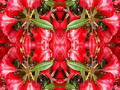 Nature Abstract Mixed Media - Floral Art by Patrick J Murphy
