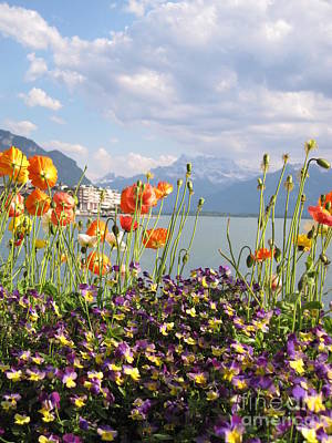 Landscape Photograph - Floral Coast 3 by Amanda Mohler