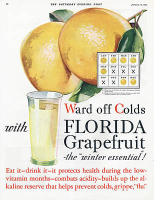 Florida  Grapefruit 1920s Usa Colds Flu Print by The Advertising Archives