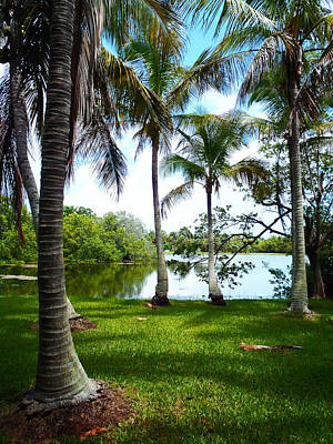 Flowers Miami Photograph - Florida Lake by Carey Chen