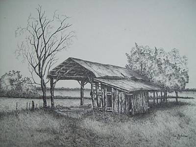 Florida Old Shed Print by Tom Rechsteiner