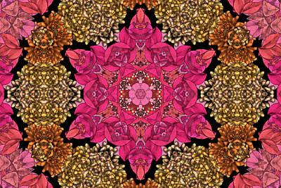 Kaleidoscope Digital Art - Florissimo Mandakal S01-02b by Variance Collections