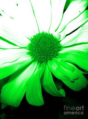 Limited Time Offers Digital Art - Flower 2c3 Green by Oksana Semenchenko