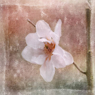 Jordan Painting - Flower Art - Nature Reminds Us by Jordan Blackstone