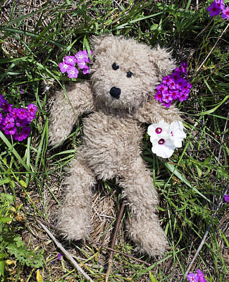 Doll Photograph - Flower Bear by William Patrick