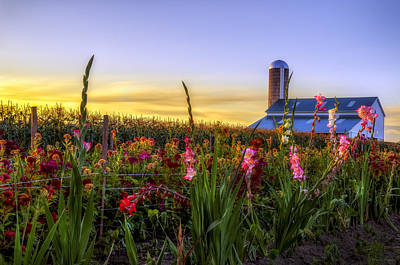Flower Farm Print by Mark Papke