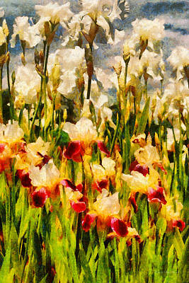 Irises Digital Art - Flower - Iris - Mildred Presby 1923 by Mike Savad
