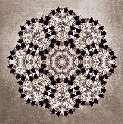 Flower Mandala Print by Filippo B