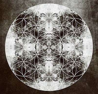 Flower Of Life S Print by Filippo B