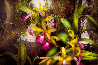 Cattleya Photograph - Flower - Orchid - Cattleya - There's Something About Orchids  by Mike Savad