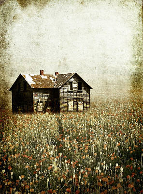 Larysa Luciw Photograph - Flowered Home by Larysa  Luciw