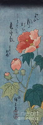 Woodblock Painting - Flowering Poppies Tanzaku by Ando Hiroshige