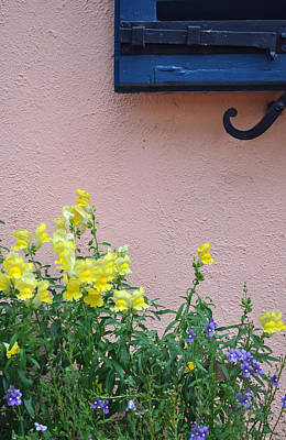 Flowers And Window Frame Print by Bruce Gourley