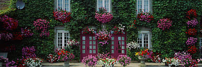 French Door Photograph - Flowers Breton Home Brittany France by Panoramic Images