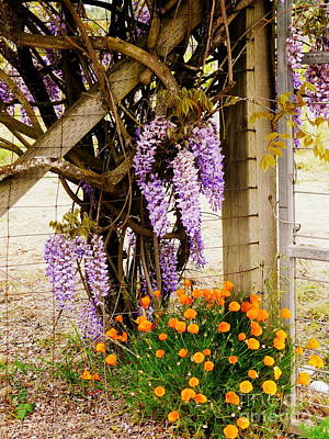 Flowers By The Gate Print by Avis  Noelle