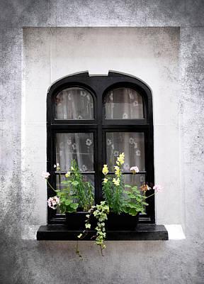 Flower Photograph - Flowers On Window by Mark Rogan