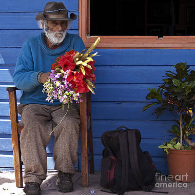 Window Bench Photograph - Flowers To Make A Living by Heiko Koehrer-Wagner