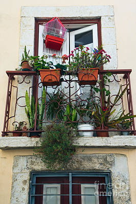 Outlook Photograph - Flowery Balcony In Alfama Lisbon by Frank Bach