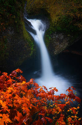 Autumn Landscape Photograph - Flowing Into Fall by Darren  White