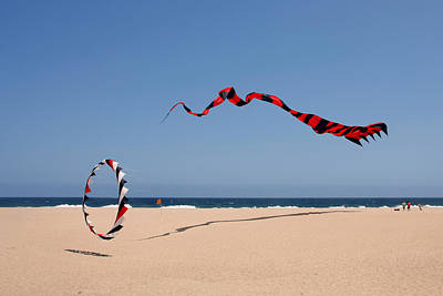 Soaring Photograph - Fly A Kite - Old Hobby Reborn by Christine Till
