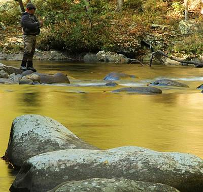 Fly Fishing In Autumn Print by Dan Sproul