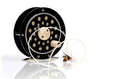 Bumblebees Photograph - Fly Fishing Reel With Fly by Tom Mc Nemar