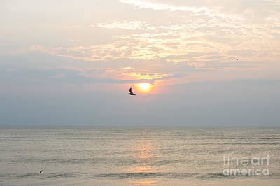 Fly Free Print by Kay Pickens