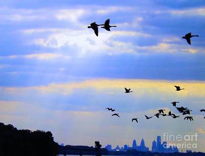 Contemporary Abstract Photograph - Fly Like The Wind by Robyn King