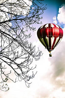 Baskets Photograph - Flying High by Jan Bickerton