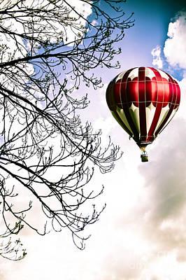Flying High Print by Jan Bickerton