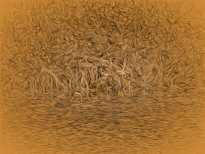 Colourfull Photograph - flying mandarin duck oct 2014-abstract Flying male mandarin duck   by Leif Sohlman