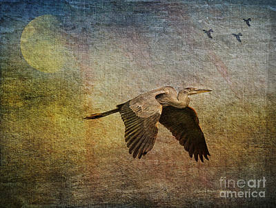 Heron Mixed Media - Flying Near The Moon by Deborah Benoit