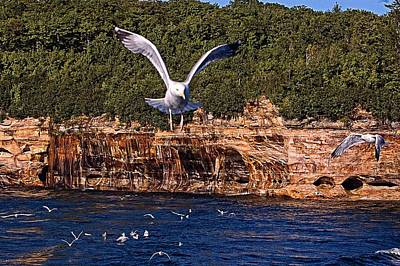 Flying Over The Rocks Print by Cheryl Cencich