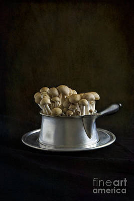 Stew Photograph - Flying Saucer by Elena Nosyreva