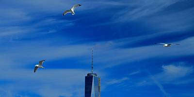 Seagull Digital Art - Flyover One World Trade Center by Dan Sproul